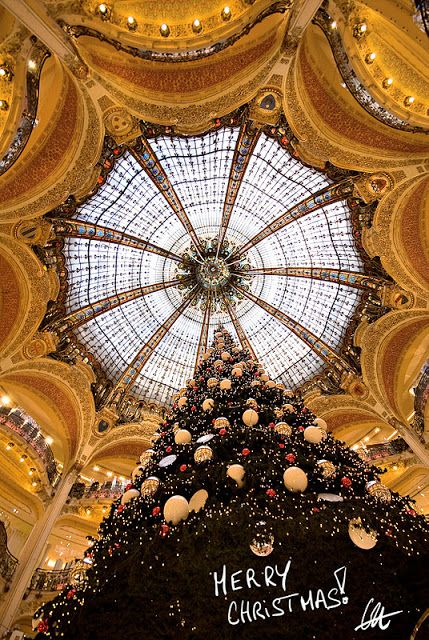 miracle: Christmas in Paris