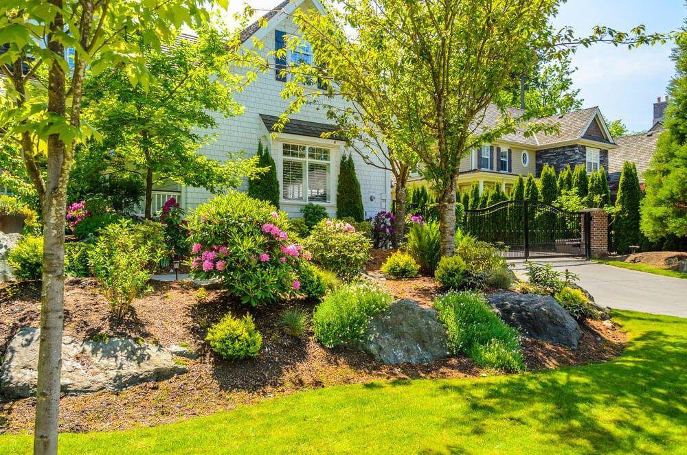 Awesome B ume und Gr ser sind die meisten pflegeleicht nat rliche Ornamente die Sie in Ihrem Vorgarten setzen