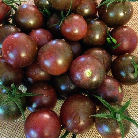 Tomato Seeds Organic Black Cherry Heirloom Organic 640 x 480