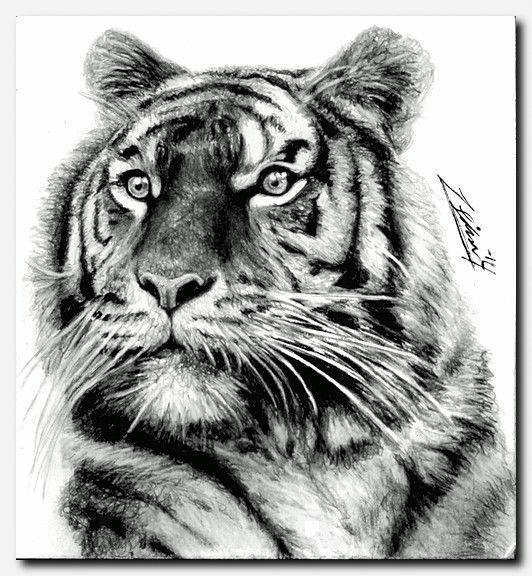 Photo of #tigertattoo #tattoo ungewöhnliche tattoo ideen, ein tattoo auf die rippen bekommen, high v …