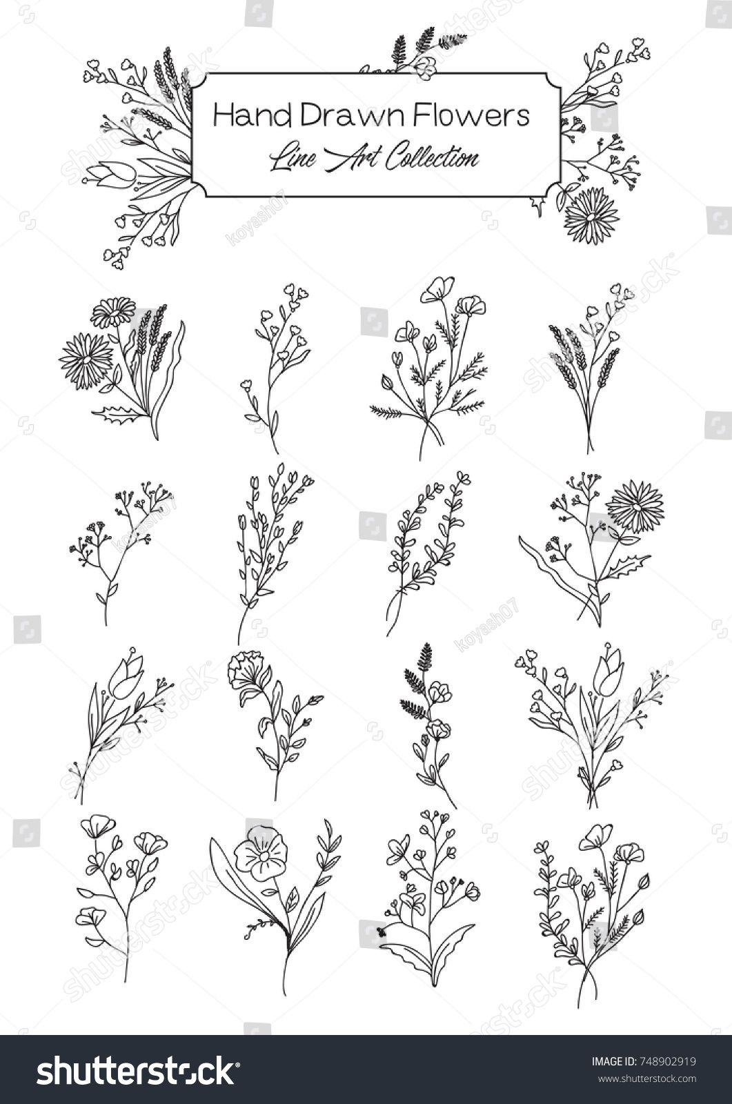 Vector Collection Of Hand Drawn Wild Flowers Flower Tattoo