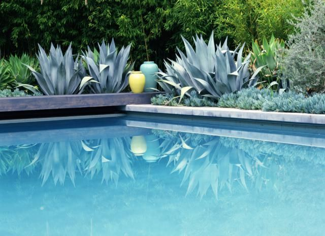 garden ideas - Garden Ideas Around Swimming Pools