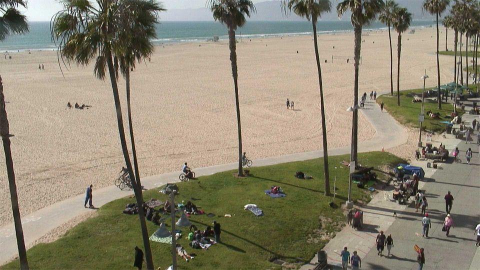 EarthCam - Venice Beach Cam | EARTH CAMS LIVE | Pinterest ...