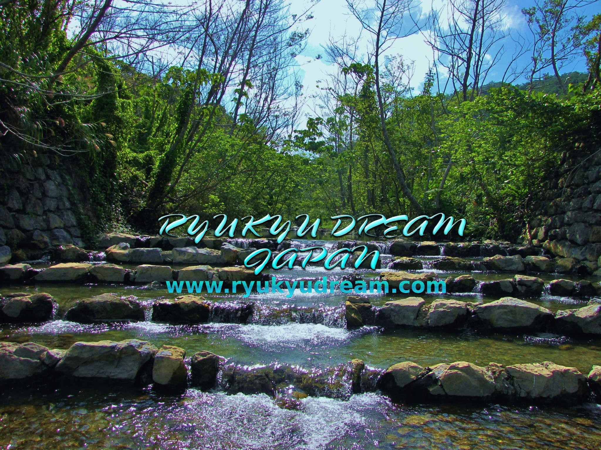 日本国沖縄県でクリエイティブしています! 「写真撮影・映像制作・音楽制作・WEB制作・フードプランニング」 RYUKYU DREAM JAPAN http://www.ryukyudream.com/