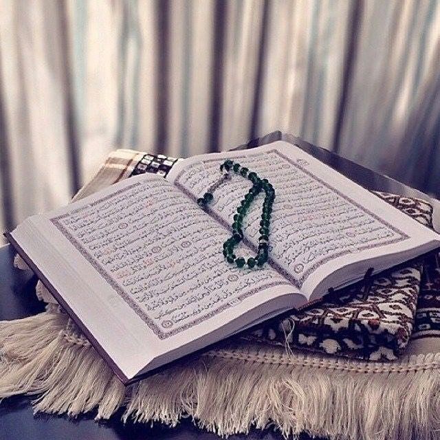 Pin By Saja Shamzz On القرآن الكريم Quran Book Quran Quran Wallpaper