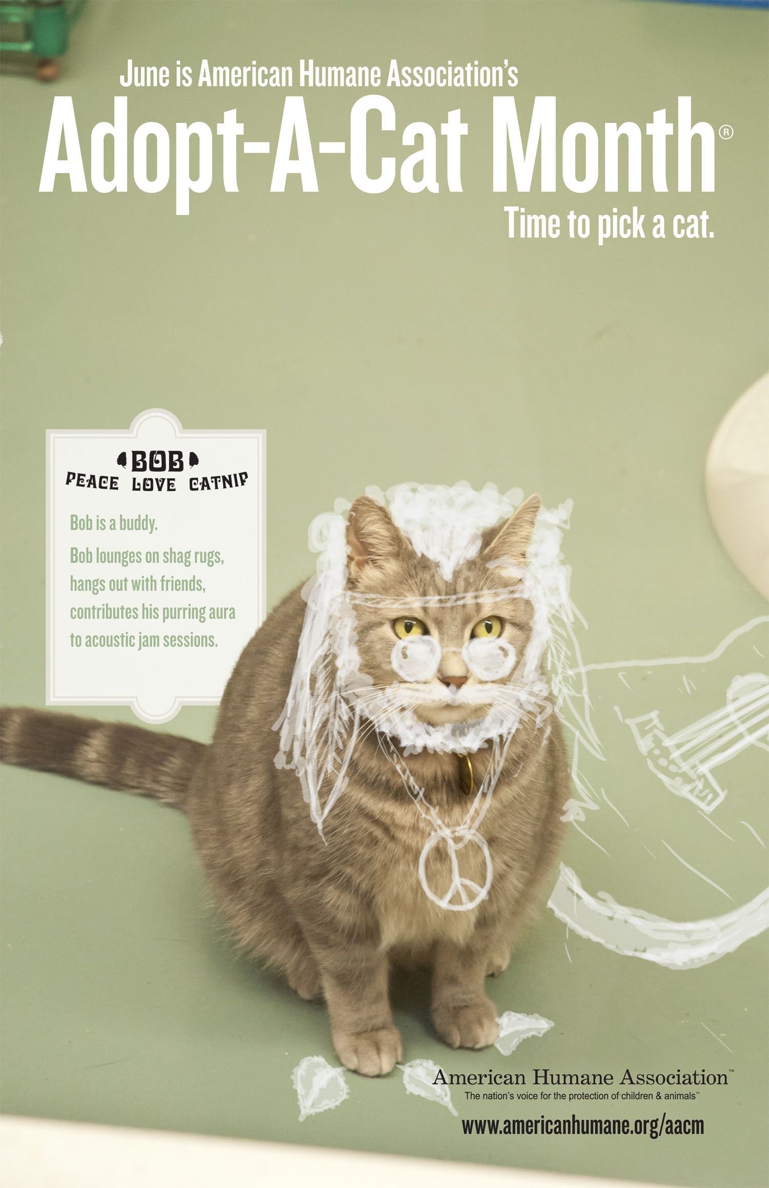 June Is Adopt A Cat Month Cat Adoption Cat Posters Newborn Kittens