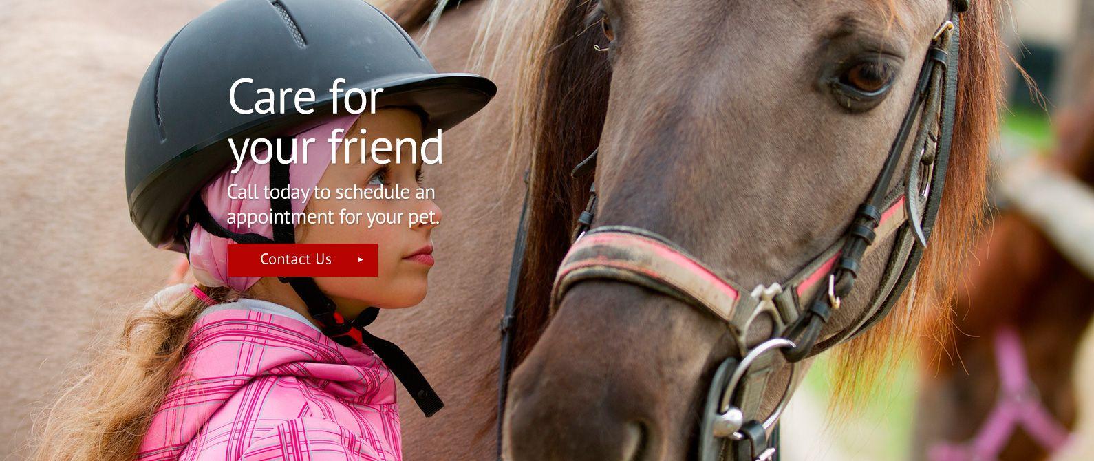 AgriPet Veterinary Service Inc. Veterinarian In