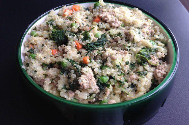 Quinoa Dog Food Recipe Dog Food Recipes Dog Treat Recipes Food