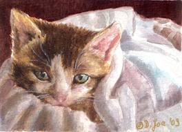 soooo good Watercolor cat, Cat art, Cat painting