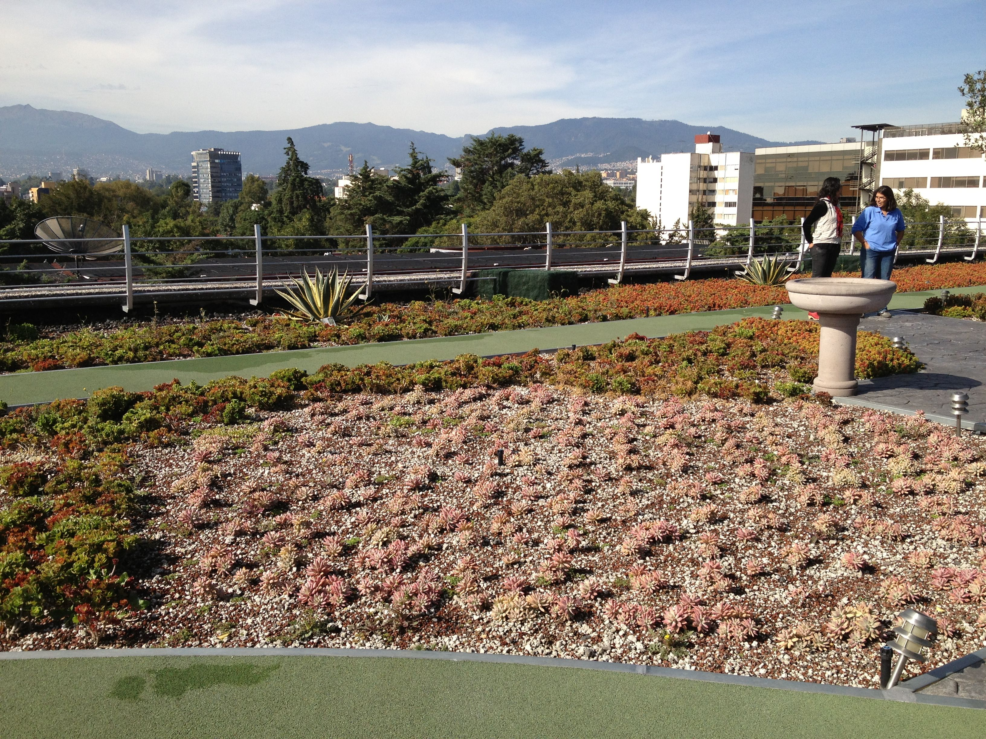 Largest green roof of Latin America