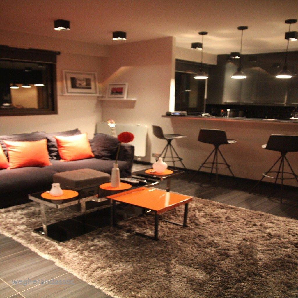 Déco Salon Moderne 20 Photos D Inspiration: Decoration Salon Beige