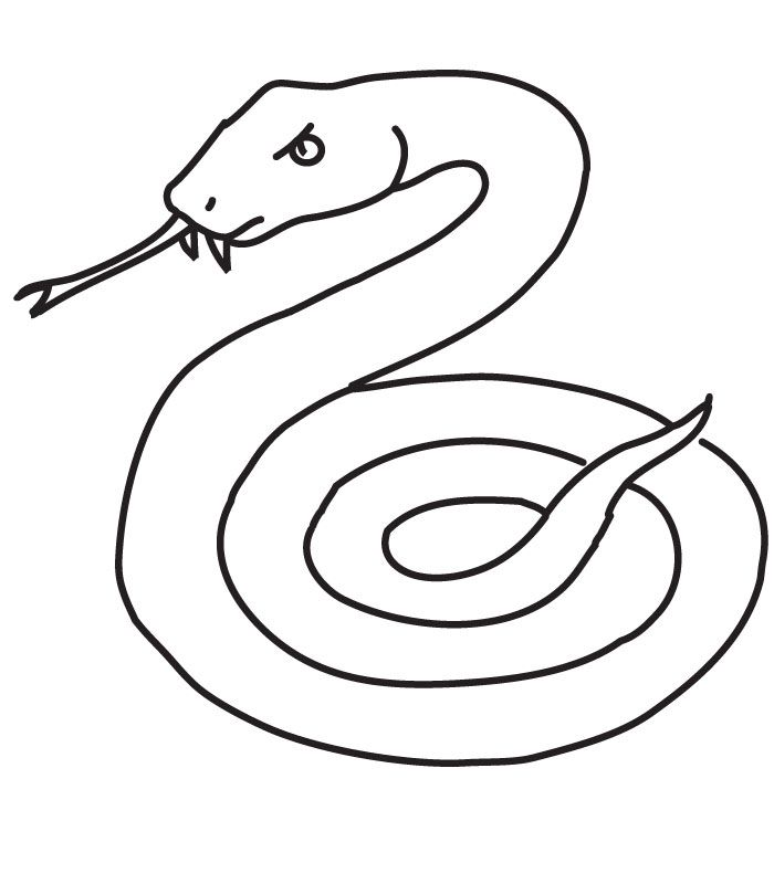 Free Coloring Pages For Snakes Mots Clefs Africa Reptile Snake