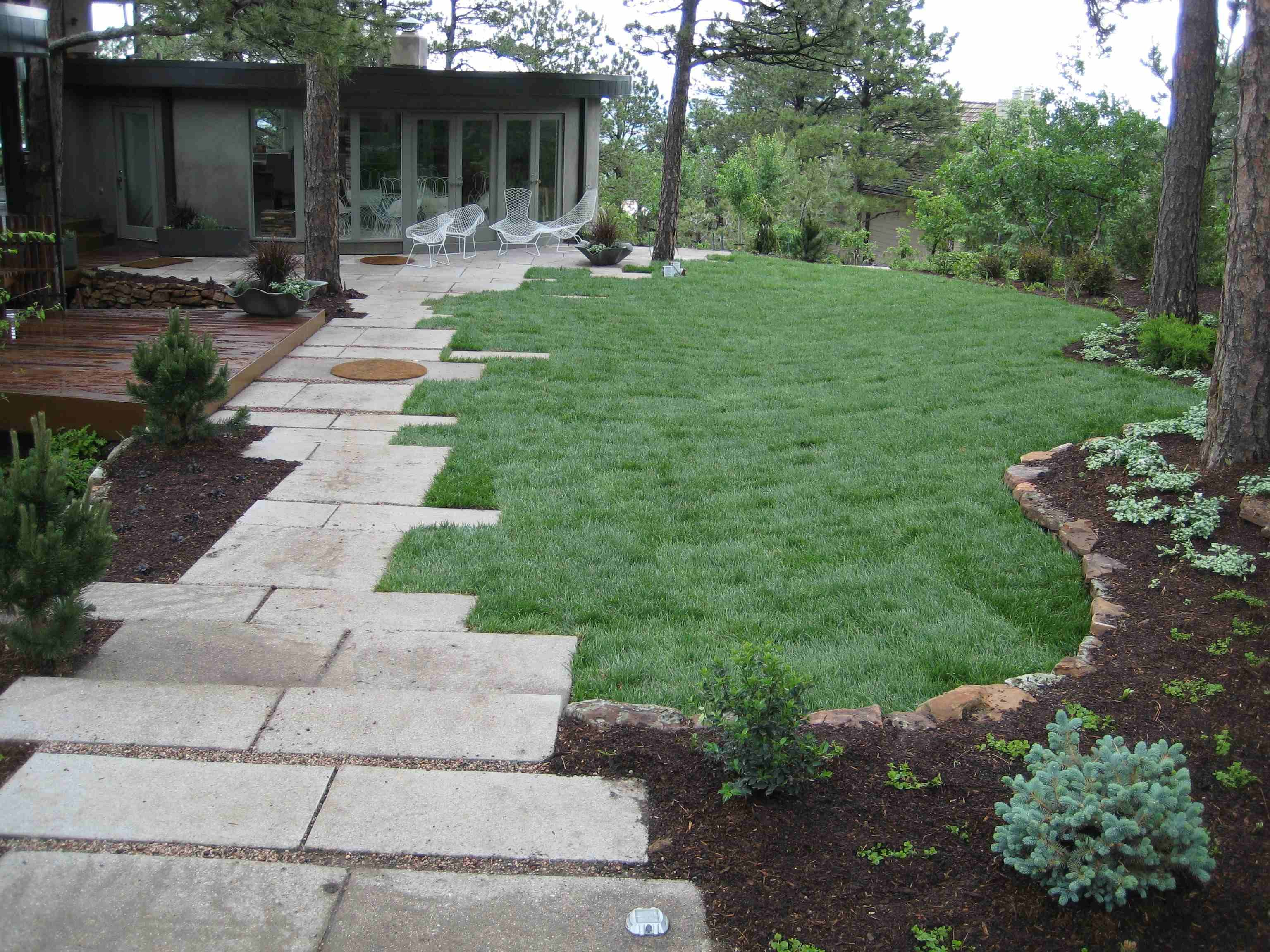 fascinating landscaping ideas