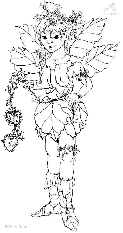 Elf coloring page | Embroidery - Angels & Fairies | Pinterest ...