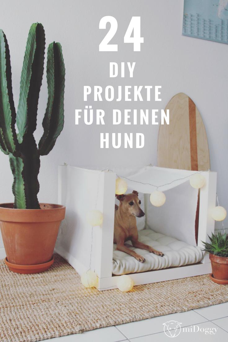 24 Diy Projekte Fur Deinen Hund Midoggy Community Hund Diy Projekte Intelligenzspielzeug Hund