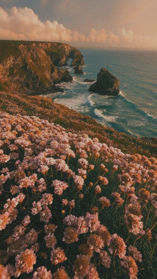 #aesthetic-lockscreen | Tumblr