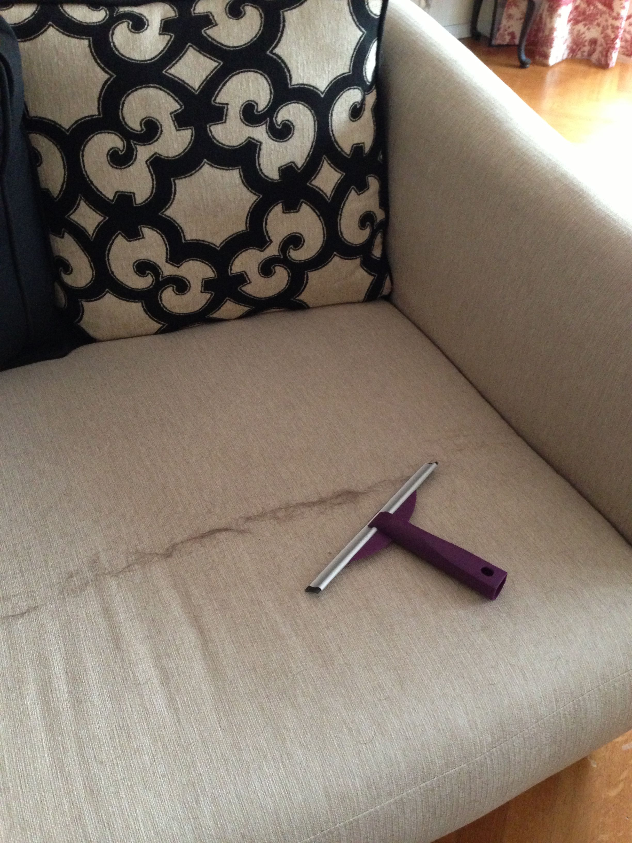 Use a squeegee to remove pet hair from furniture It s impossible