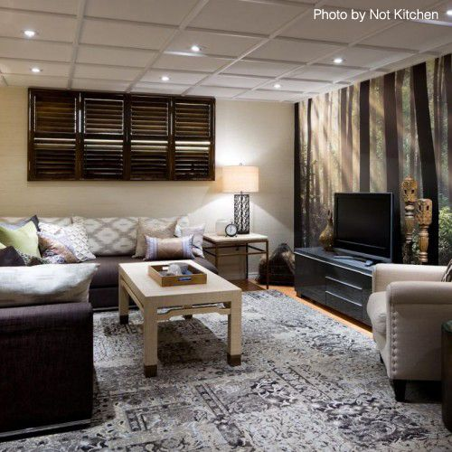 Candice Olson Basement Design: While The Mural Absolutely Brought The Basement To Life