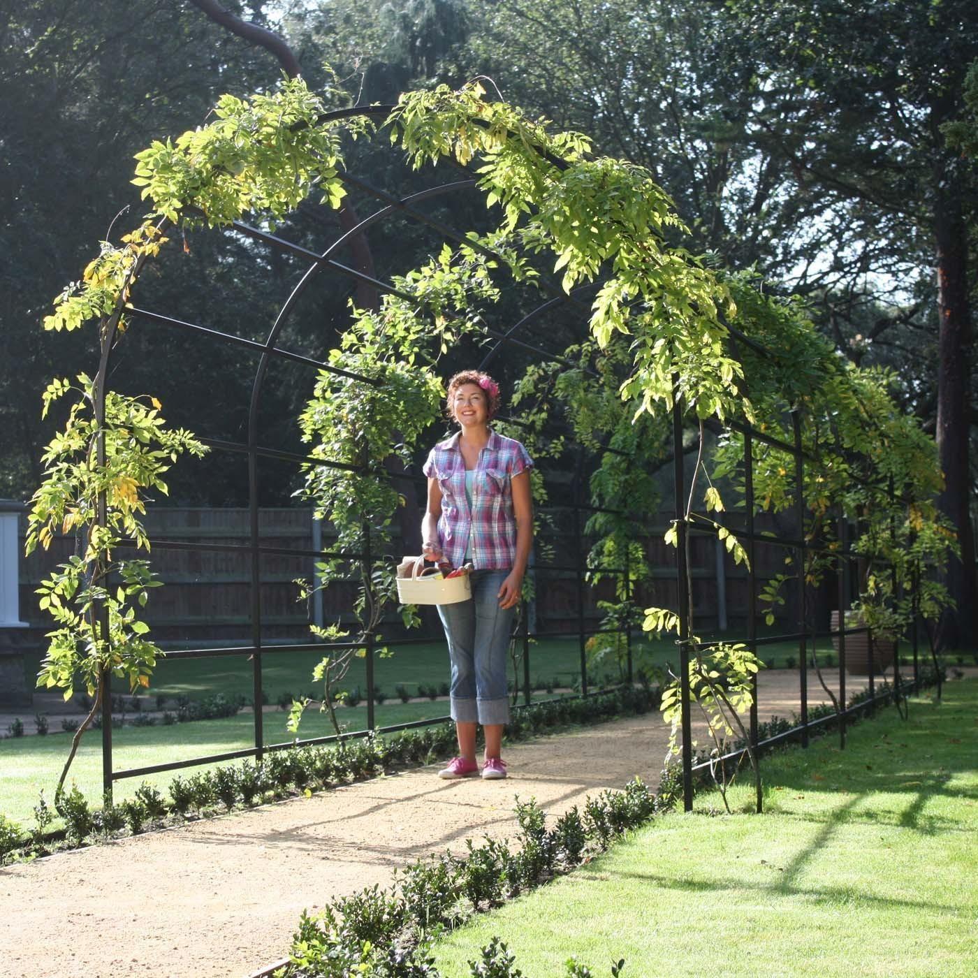 Roman Arch Garden Pergola   Harrod Horticultural (UK)