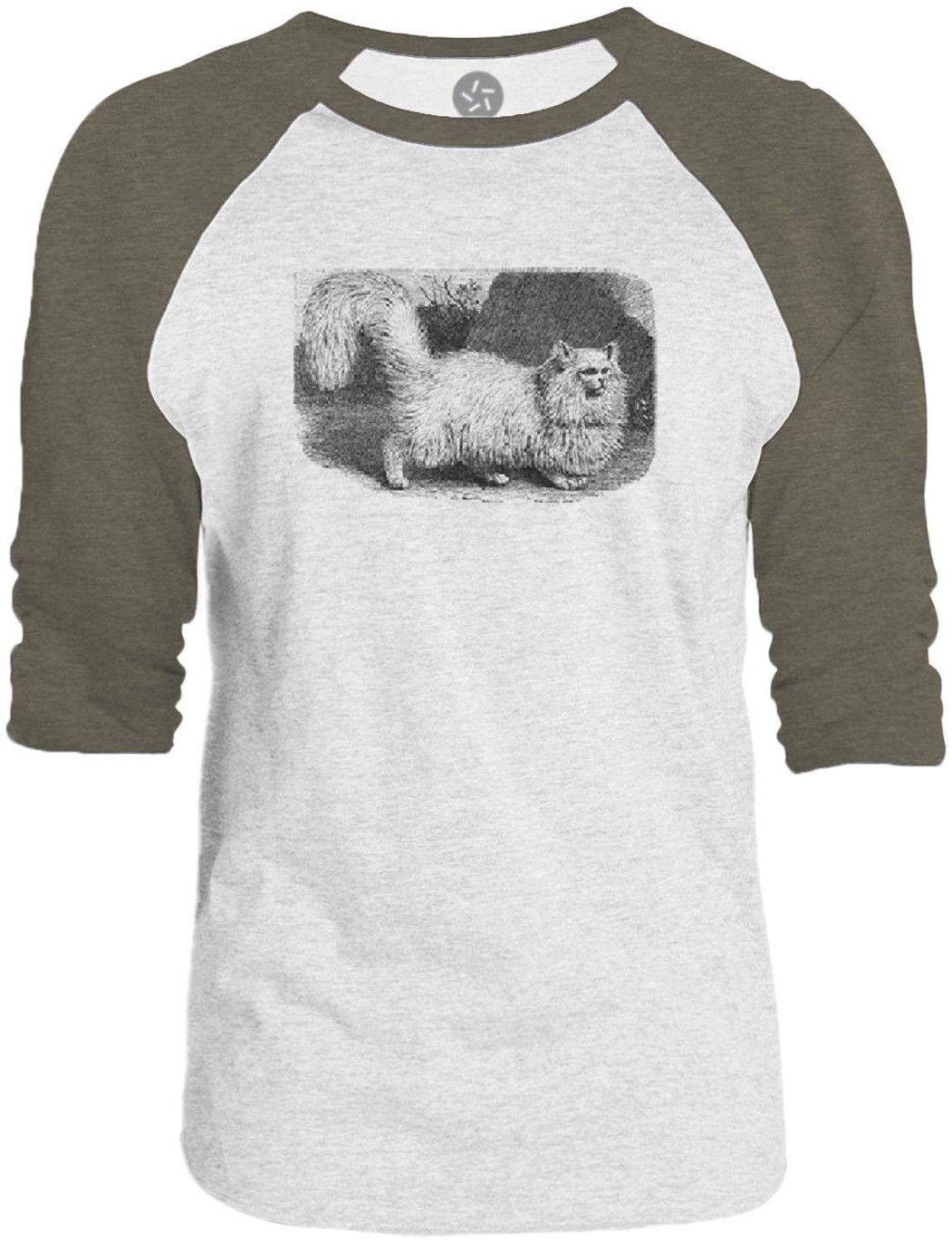 Big Texas Fluffy Kitten (Black) 3/4-Sleeve Raglan Baseball T-Shirt