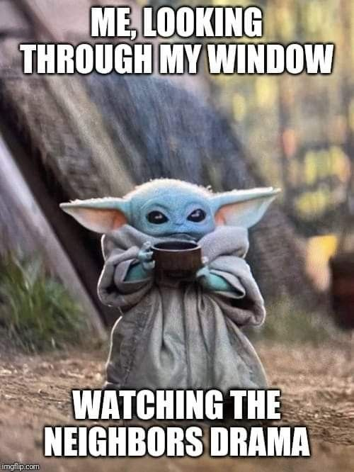 Pin By Veronica Parra Gonzalez On Funnies In 2020 Yoda Meme Yoda Funny Relatable Memes