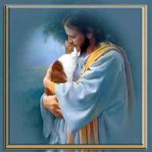 Jesus Holding Cat Jesus Pets Pet Remembrance