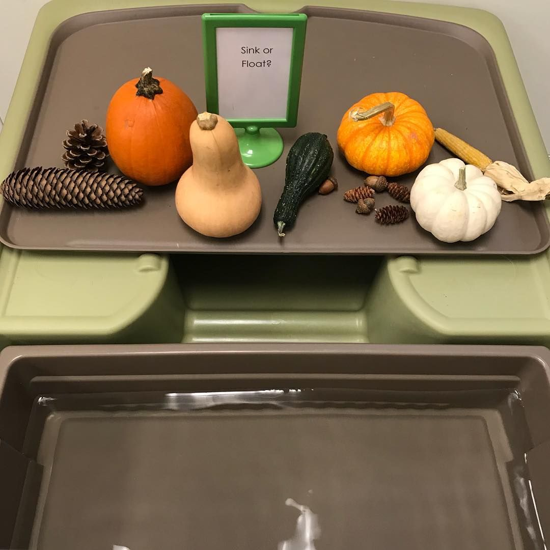 Fall Themed Sink Or Float Activity From Kimberly