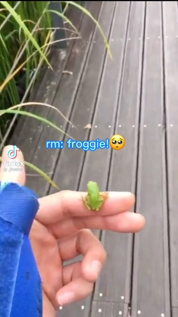 RM with a frog 🐸