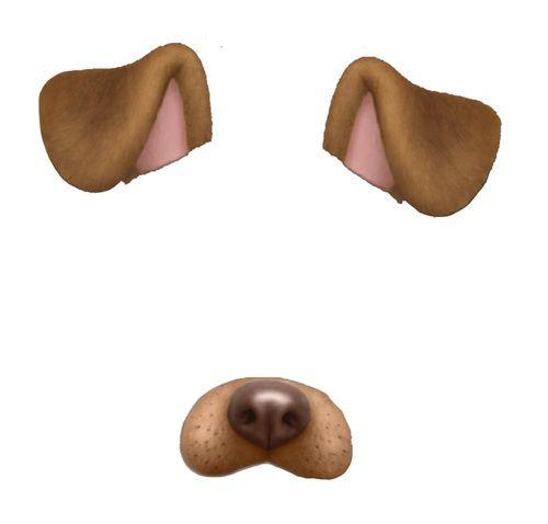 Imagen De Overlay Snapchat And Dog Snapchat Filters Png Dog Filter Snapchat Dog Filter