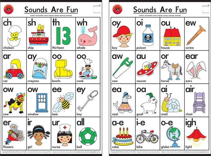 Double Sound Charts Set of 2 SLP Phonemic awareness