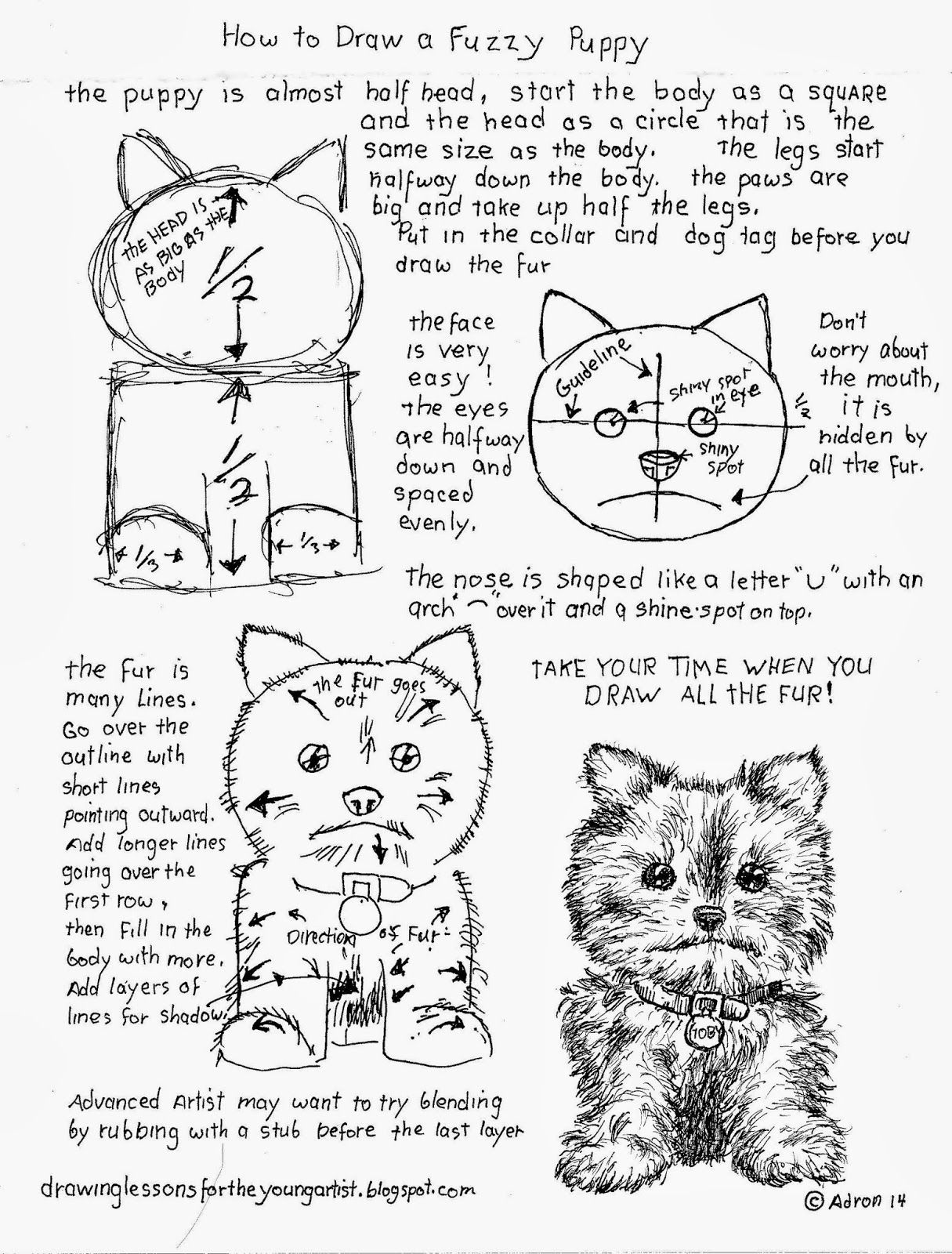 How To Draw Worksheets For The Young Artist Animals
