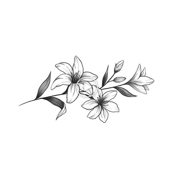 Blumentattoos Blumetattoos Tatuaje De Jazmin Tatuajes De Flores De Lirio Diseno De Tatuaje De Lirio