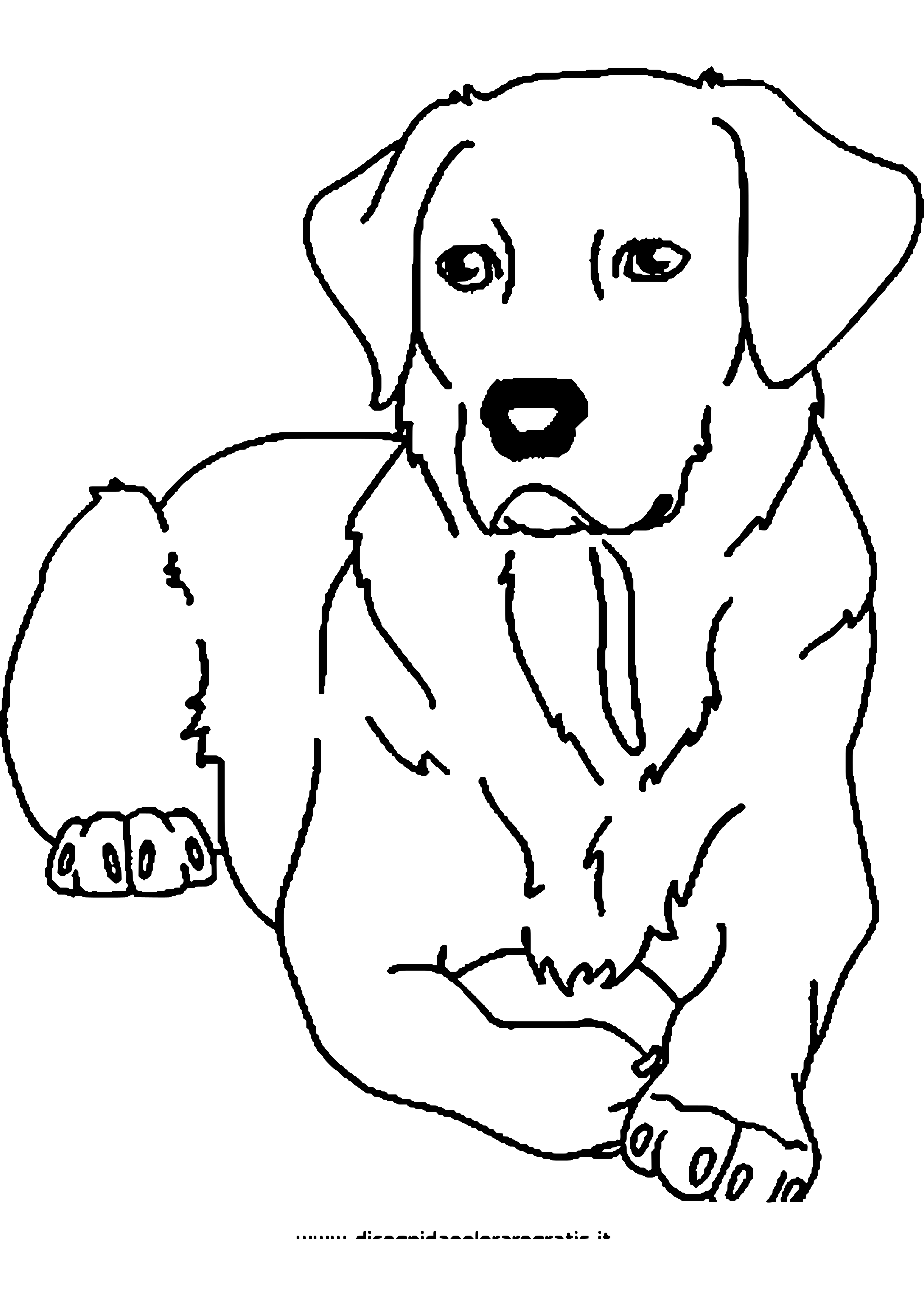 Ausmalbild Hund Geburtstag in 8  Ausmalbilder hunde