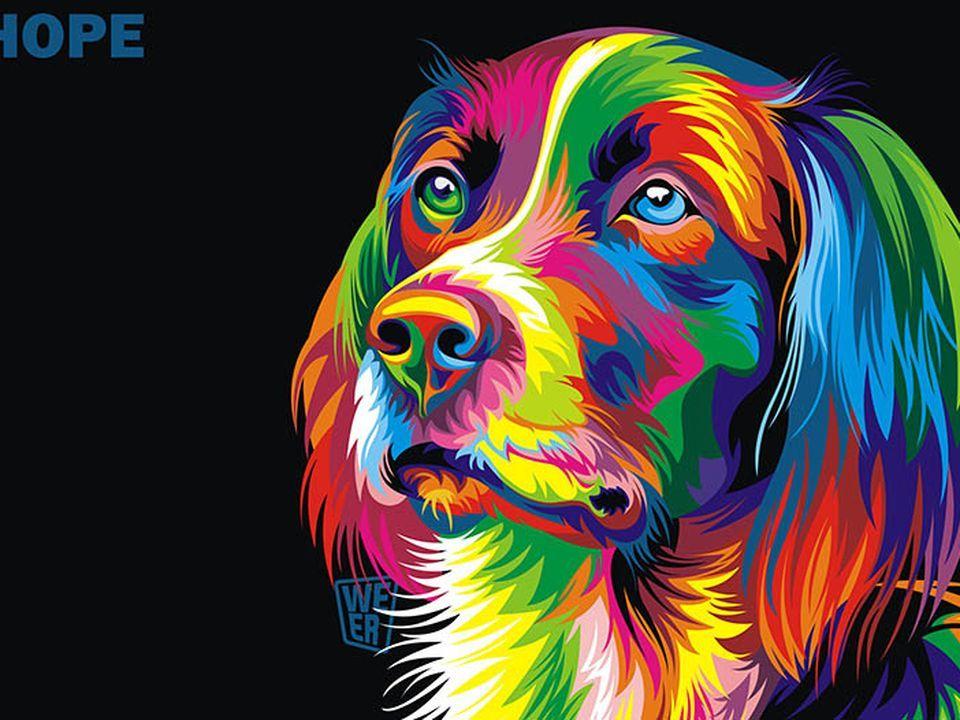 Coloridas Ilustraciones Vectoriales Zveri Uzhe De Taringe Dog Pop Art Animal Paintings Cross Paintings