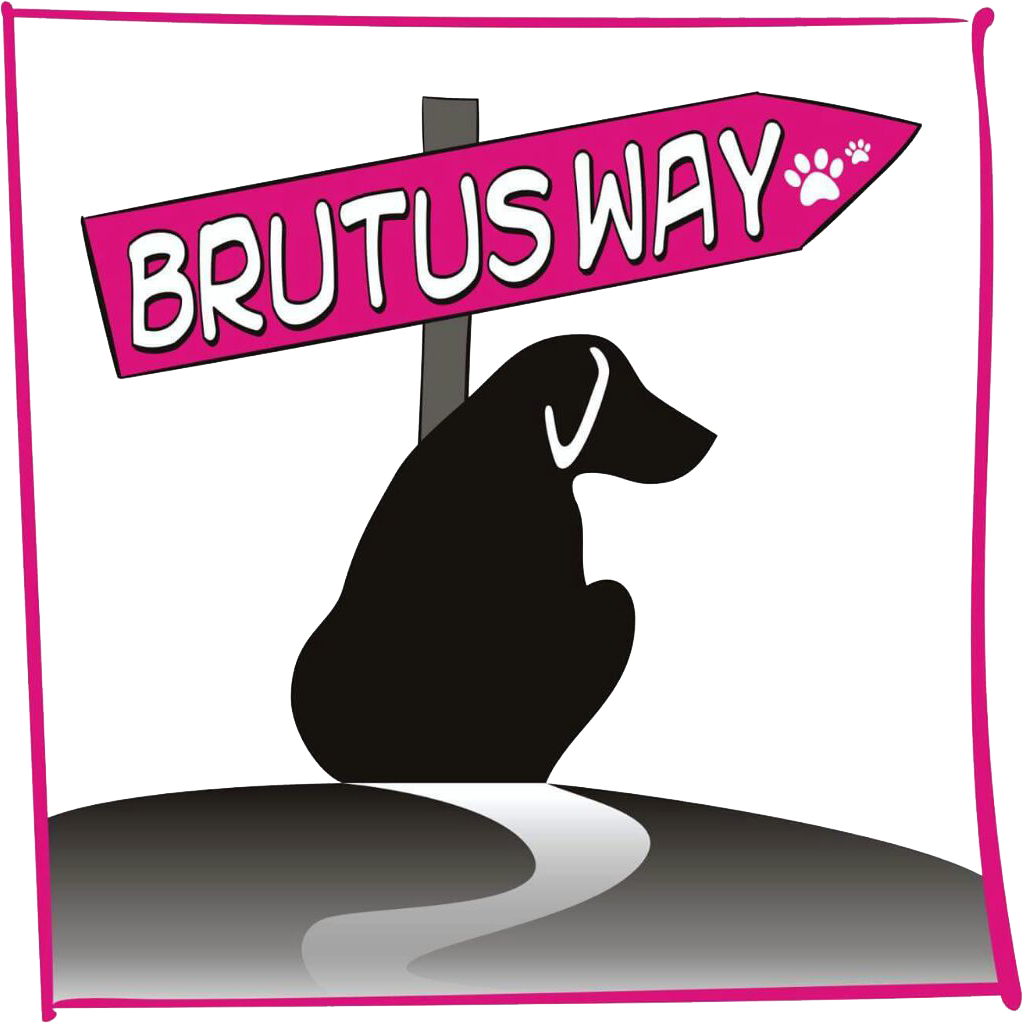 #dogalize Brutus Way di Sabrina Moroni #dogs #cats #pets