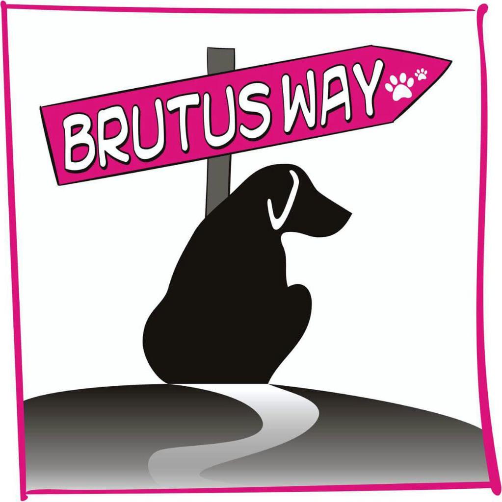 #dogalize Brutus Way di Sabrina Moroni #dogs #cats #pets