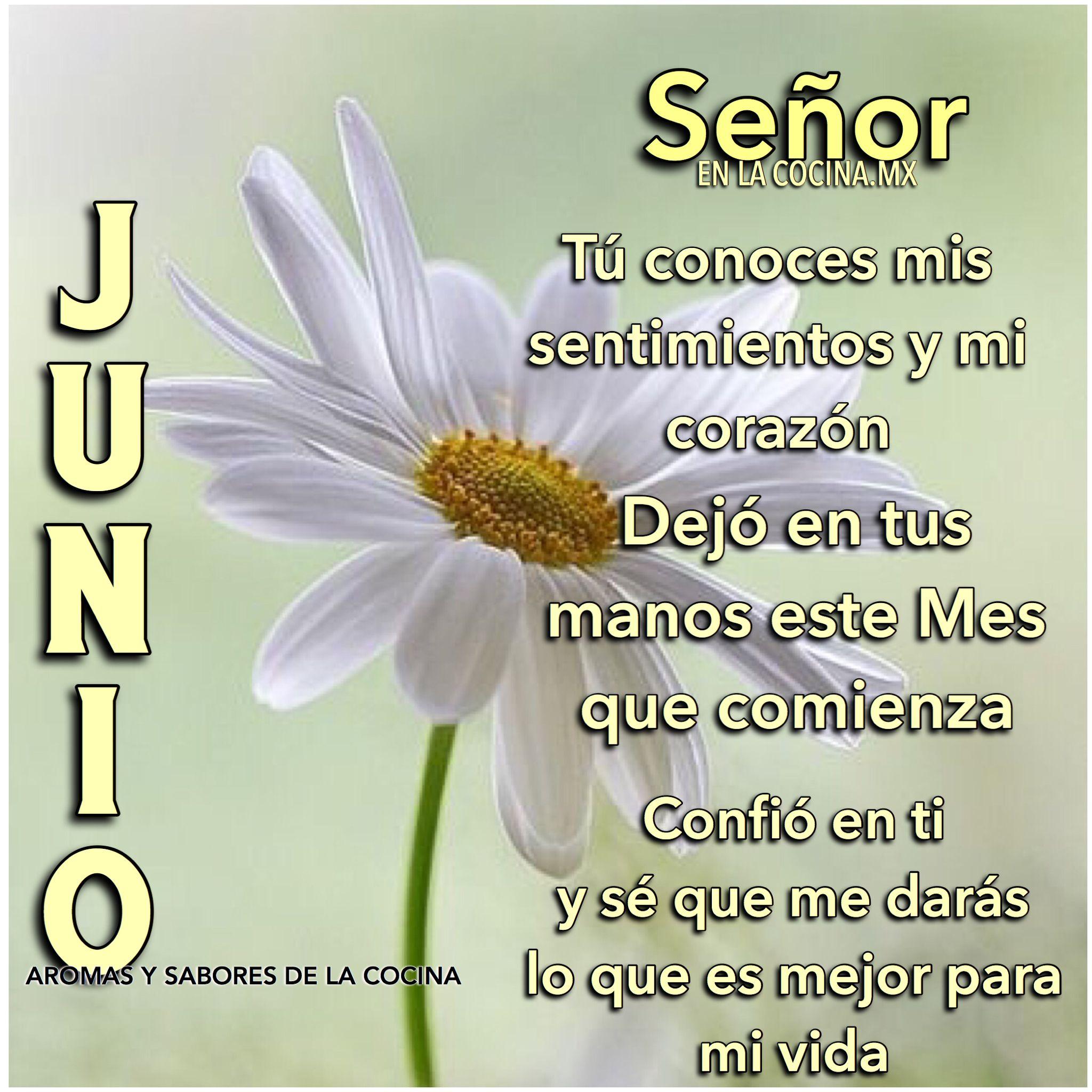 Bienvenido Junio Bienvenido Junio Frases De Meses Y