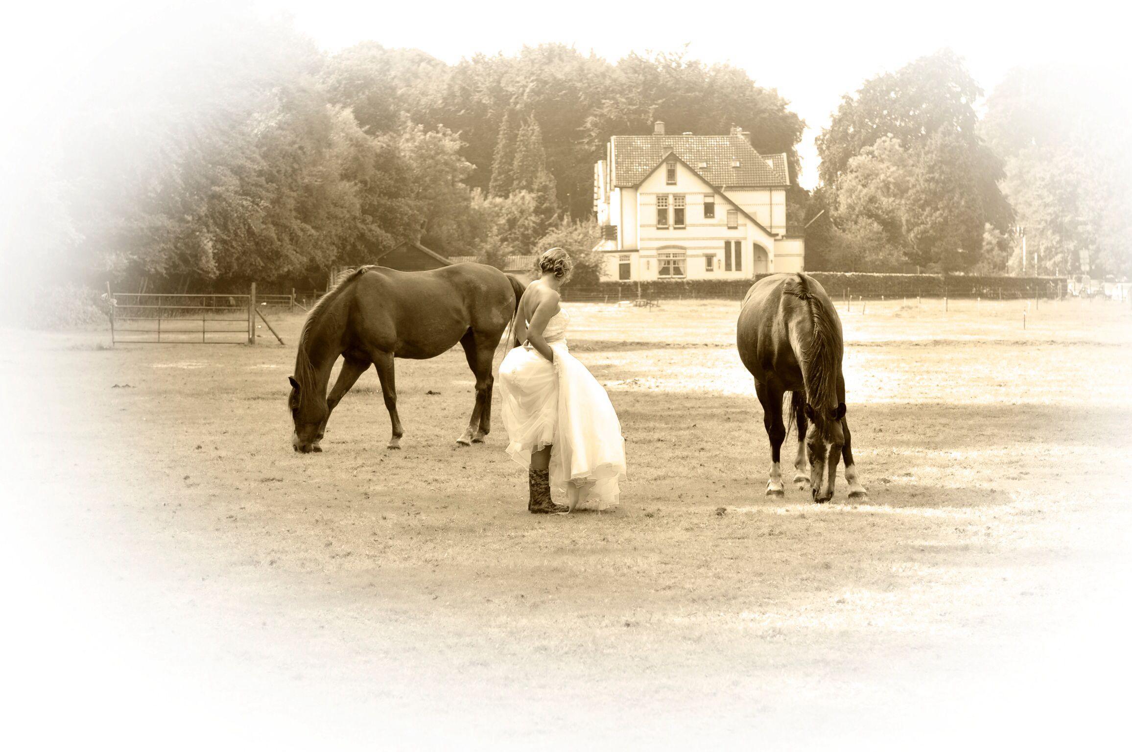 Wedding photoshoot with horses.