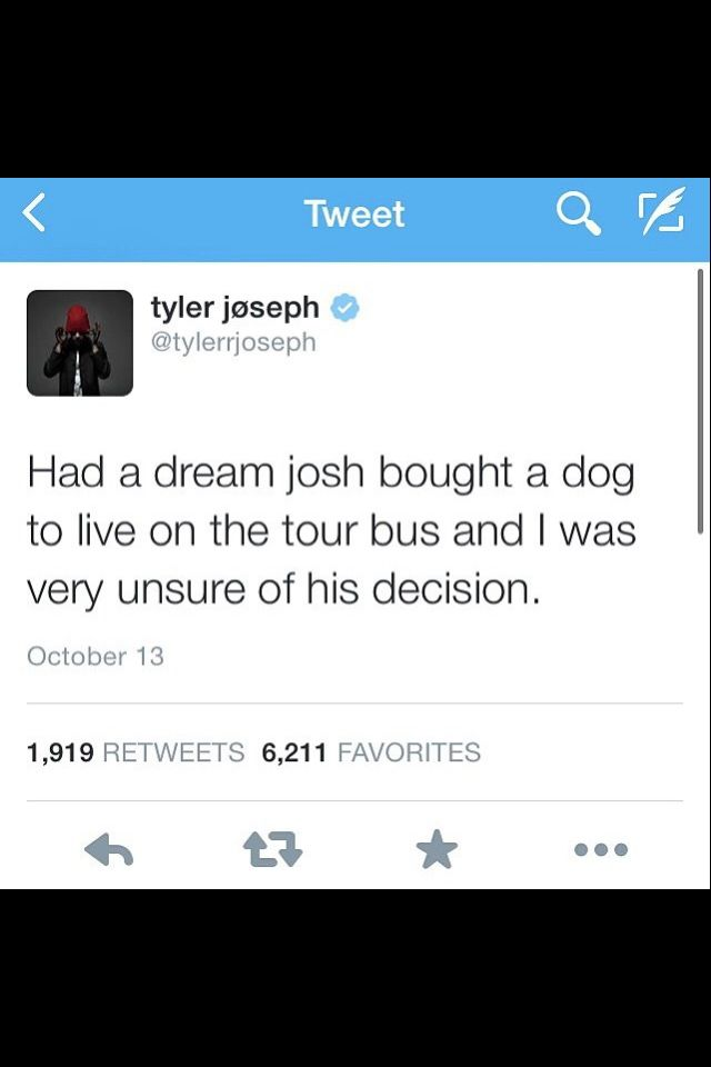 Why is everything Tyler says so cute?