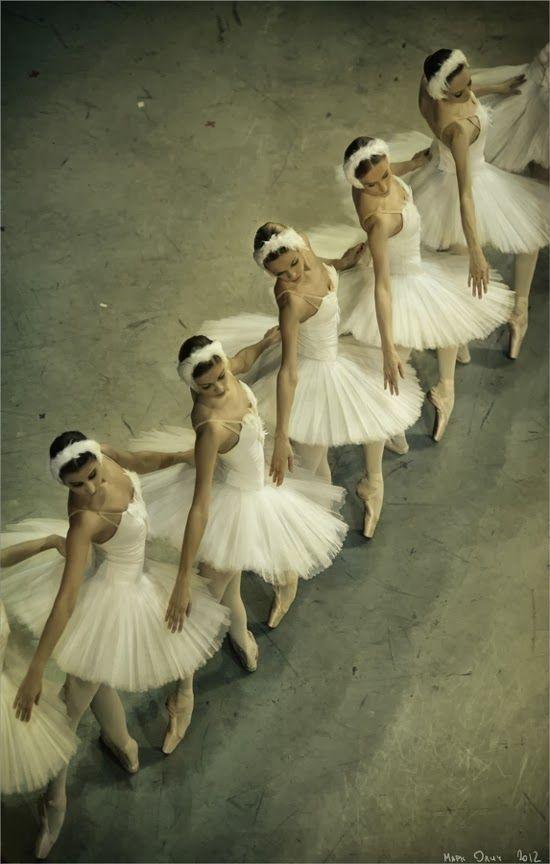 Beauty Of Ballet Ballet Bailarina Poses De Danca