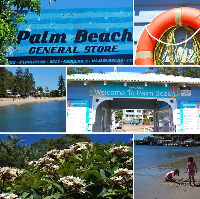 Blogging about the Ettalong (Central Coast NSW) to Palm