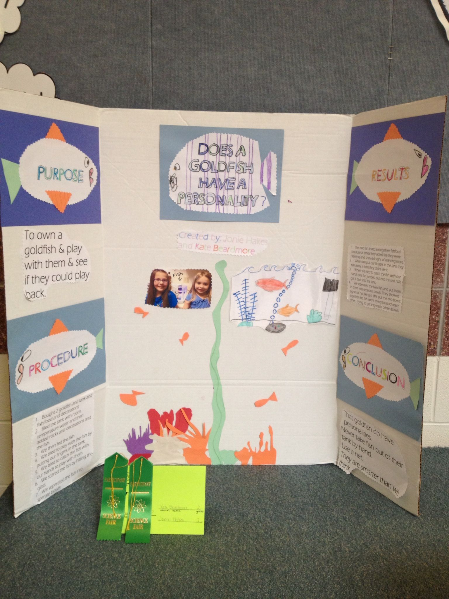 easy third grade science projects In my school, all of third grade is required to complete a science fair project to be proactive and to minimize the risk of parents wanting to gauge my eyes out, i created a science fair.
