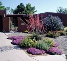 drought landscaping modesto - Google Search | Front yard ...