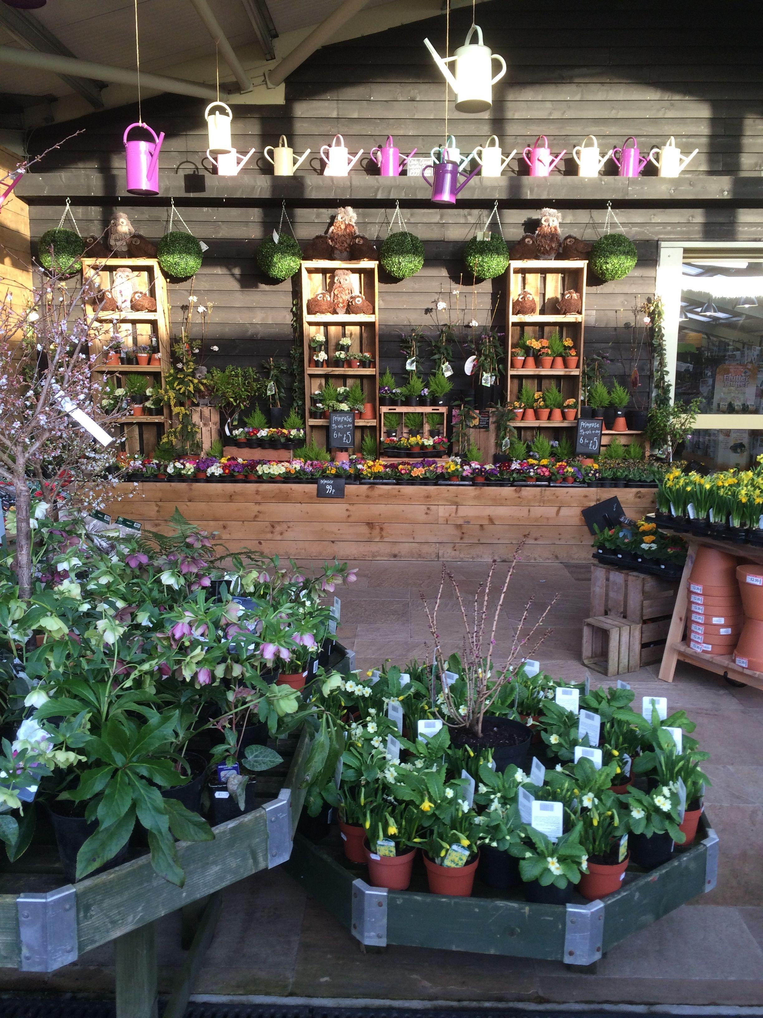 Timmermans Garden Centre Nursery Garden Outdoor Retail