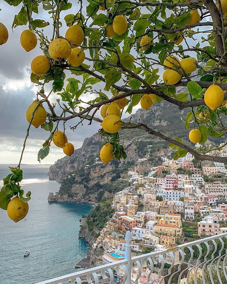 """Photo of Travel Vacations Nature on Instagram: """"Lemon viewpoint 🍋 Amalfi coast, Italy. Locations and photos by  1. Praiano (@casaangelinalifestyle) 2. Amalfi (@anastasiaprotas) 3.…"""""""