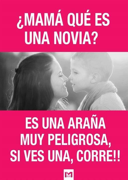 Que Es Novia Mothers Quotes To Children Humor Funny Memes