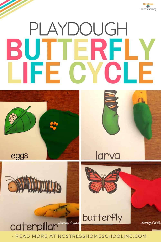 Playdough Kindergarten Butterfly Life Cycle Activities Butterfly Life Cycle Kindergarten Butterfly Life Cycle Life Cycles [ 1500 x 1000 Pixel ]