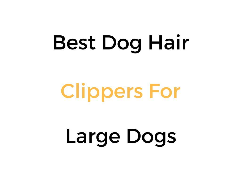 Best Dog Hair Clippers For Large Dogs Dog Hair Hair Clippers Best Dogs