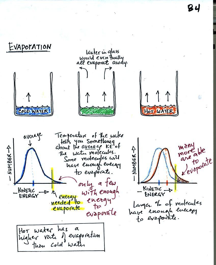 Salt Water Vs Fresh Evaporation Science Experiment