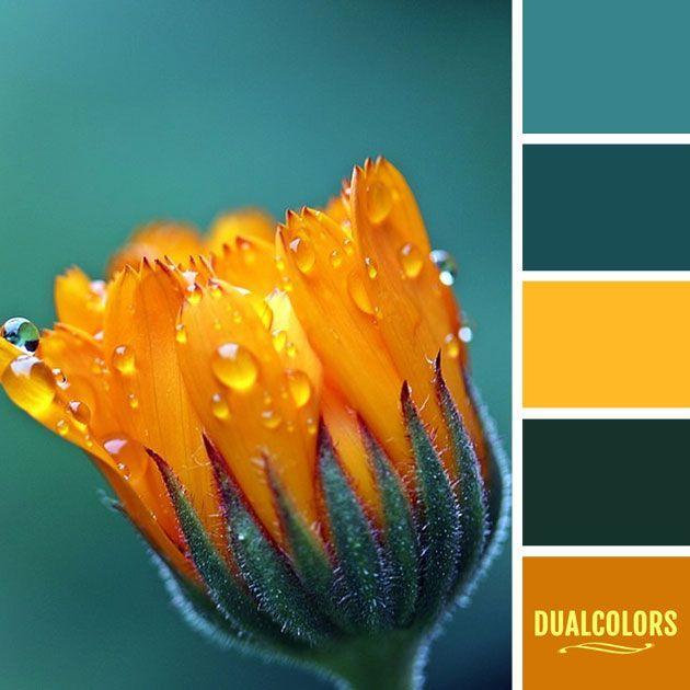 Color Paleta 130 Color Paleta Paletten Orange Farbpaletten
